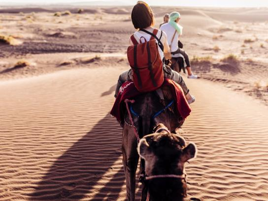 Rear view of people riding camels in desert