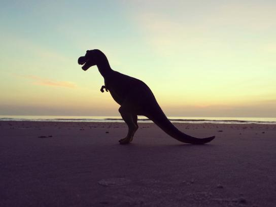 Yes, that's a dinosaur on a beach