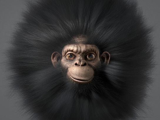 Mitsubishi Print Ad - Chimp