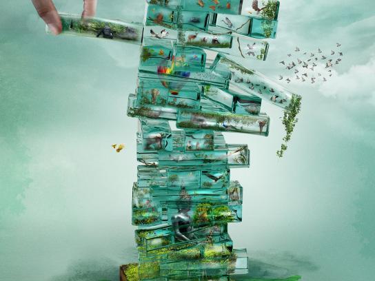 WWF Print Ad - Green