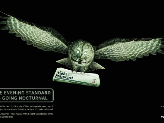 The Late Night Standard Outdoor Ad - Owl