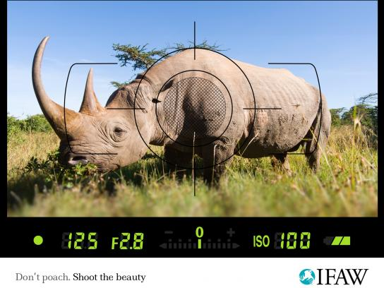 IFAW Print Ad -  Anti-poaching, Rhino
