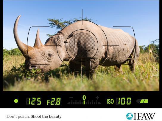 IFAW Print Ad -  Anti-poaching, Rhino
