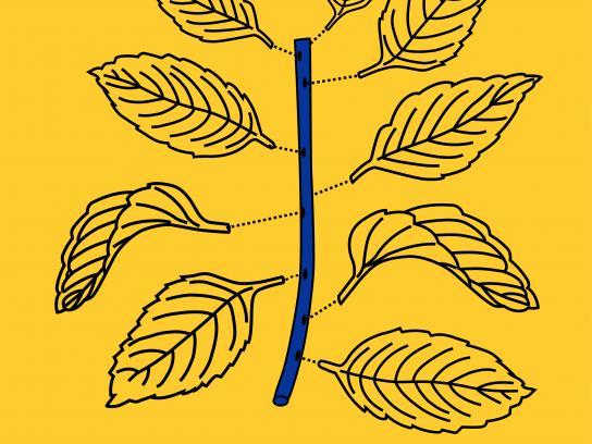 IKEA Print Ad - Easy Gardening, 3