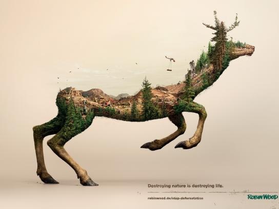 Robin Wood Print Ad -  Deer