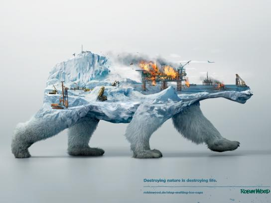 Robin Wood Print Ad -  Polar bear