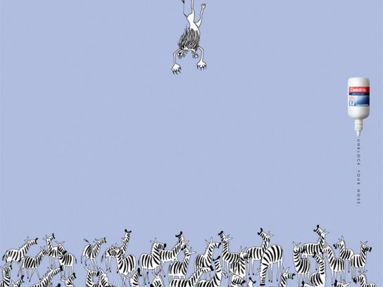 Conidrin Print Ad -  Lions/Zebras