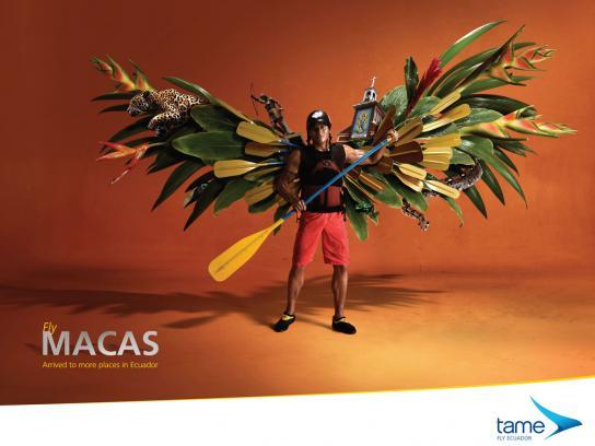 Tame Ecuador Airlines Print Ad -  Fly Macas