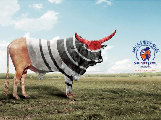 Sky Company Skydiving Print Ad -  Target, Bull