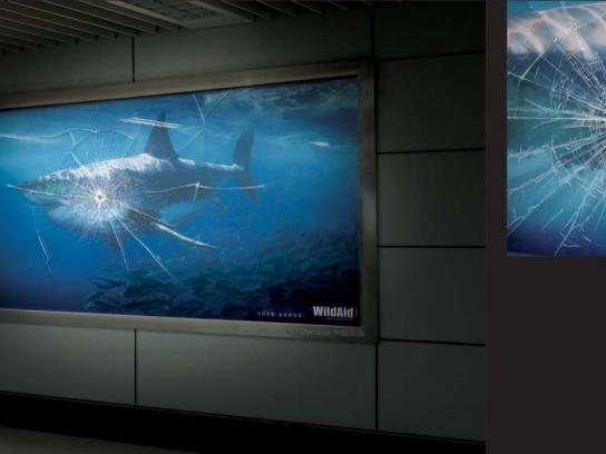 WildAid Outdoor Ad -  Shark