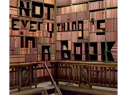 University of Gent Print Ad -  Bookcase