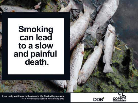 COPPT Print Ad -  National No Smoking Day, Fish