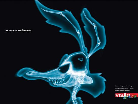 X-Ray, 2