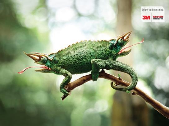 3M Print Ad -  Chameleon