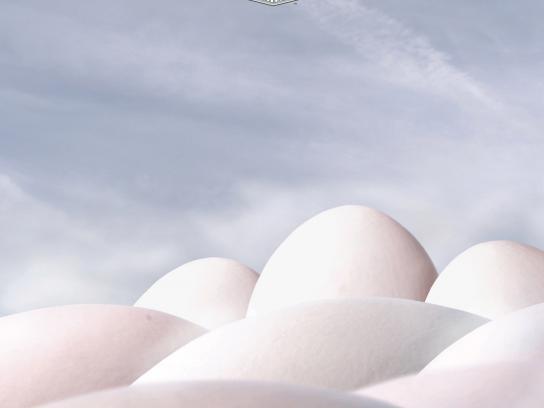Calgary Farmers' Market Print Ad -  Eggs