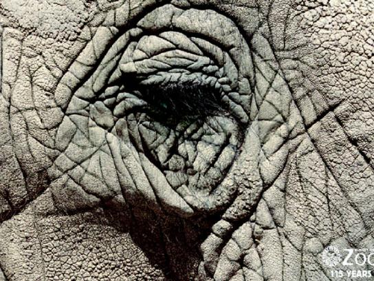 Buenos Aires Zoo Print Ad -  Eyes