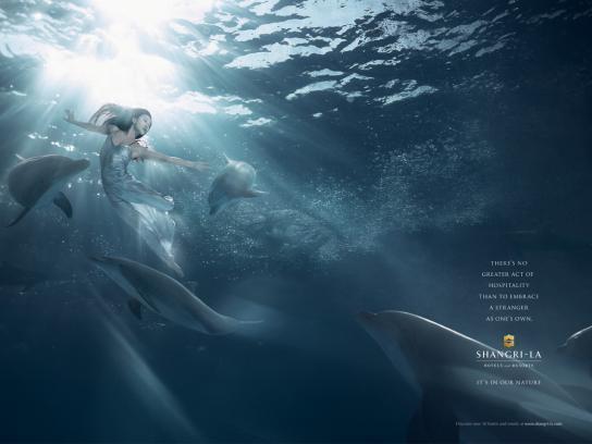 Shangri-La Print Ad -  Dolphin