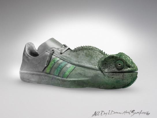 Adidas Outdoor Ad -  All Day I Dream About Sneakers, Chameleon