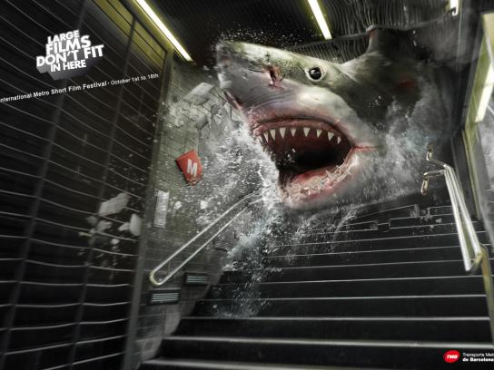 TMB Print Ad -  Shark