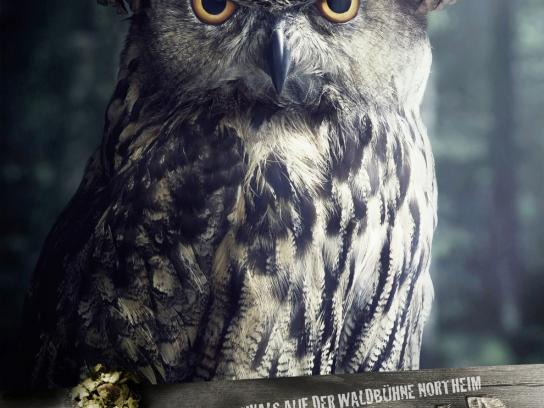Stadt Northeim Print Ad -  Annoyed forester, Owl