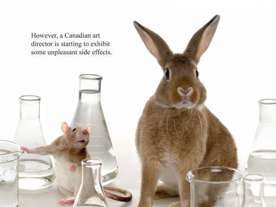 Ads of the World Print Ad -  Rabbit