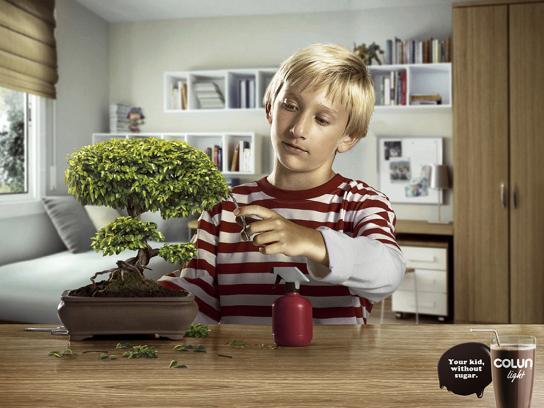 Colun Print Ad -  Bonsai