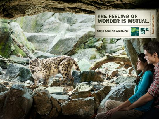 Bronx Zoo Print Ad -  Leopard