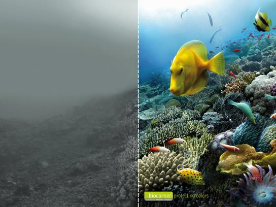 Biocorner Print Ad -  Sea