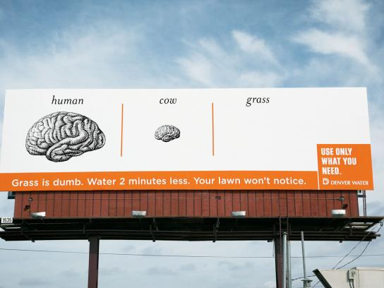 Denver Water Outdoor Ad -  Brain