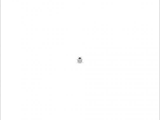Shivam Optics Print Ad -  Bug target