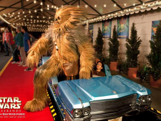 Disney Print Ad -  Chewbacca