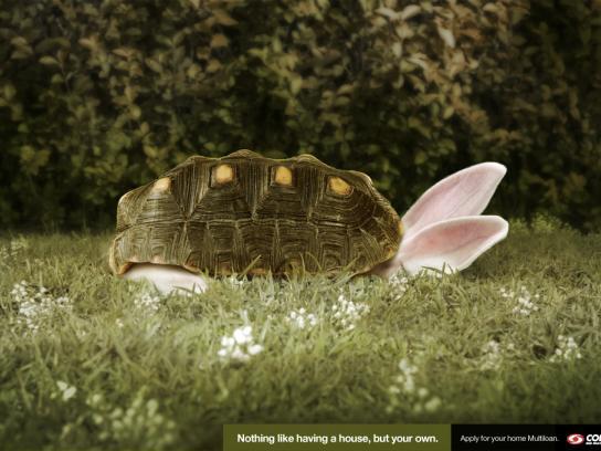 Colpatria Print Ad -  Rabbit