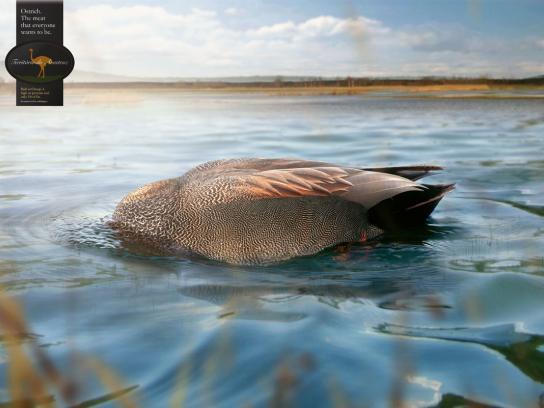 Ostrich Territory Print Ad -  Duck