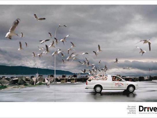 Drive Print Ad -  Fish