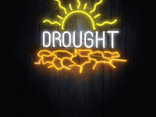WWF Print Ad -  Drought