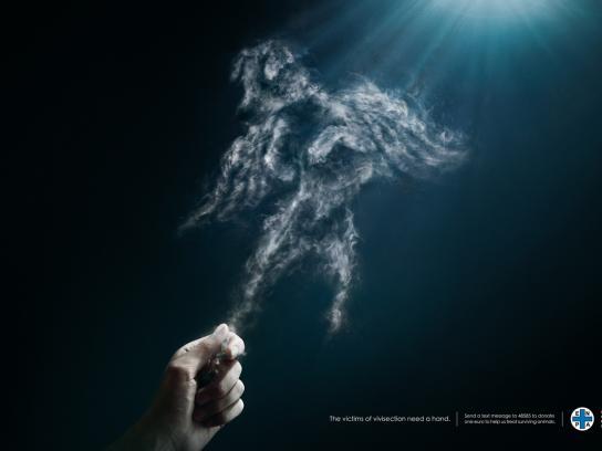 ENPA Print Ad -  Ghost