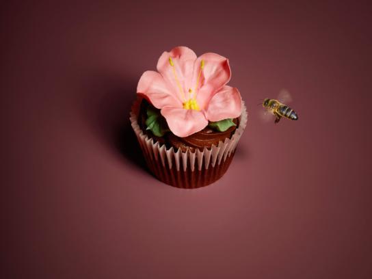 Eini & Co cupcakes Print Ad -  Bee