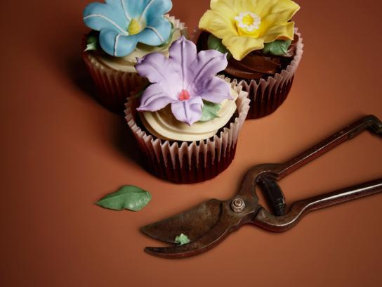 Eini & Co cupcakes Print Ad -  Shears