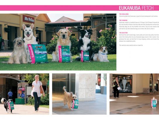Eukanuba Ambient Ad -  Fetch