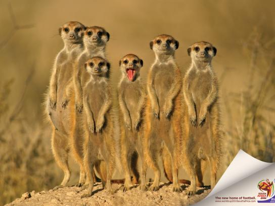 FIFA Print Ad -  Mongoose