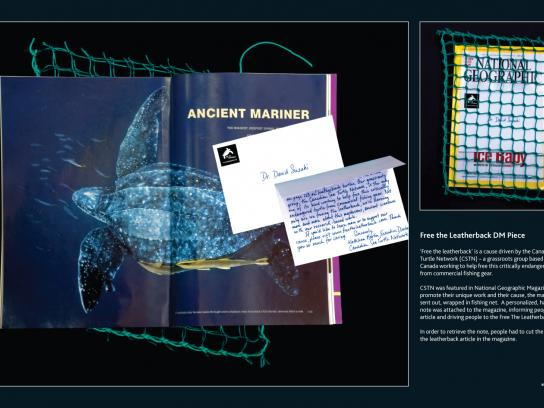 Canadian Sea Turtle Network Direct Ad -  Free the Leatherback DM Piece