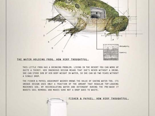 Fisher & Paykel Print Ad -  Frog