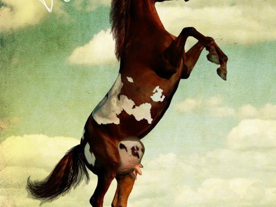Saatchi & Saatchi Print Ad -  Horse