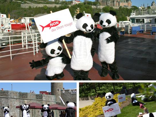 Sushi Taxi Ambient Ad -  Operation Panda