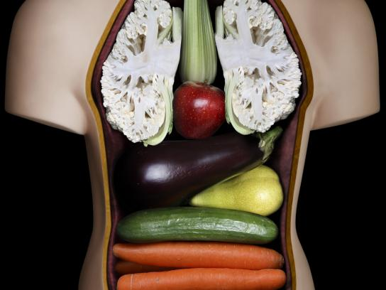 IVU Print Ad -  Anatomy Model Man