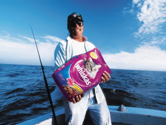 Whiskas Print Ad -  Catch, 3