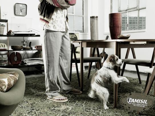 Lamisil Print Ad -  Dog