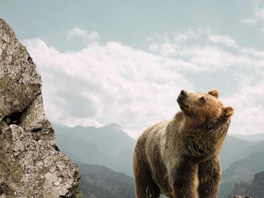 Land Rover Print Ad -  Bear