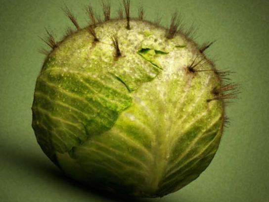 Hair Club Print Ad -  Cabbage