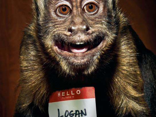 Lucky Monkey Petting Zoo Print Ad -  Logan